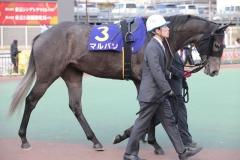 181231 東京2歳優駿牝馬-02