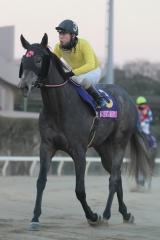 181231 東京2歳優駿牝馬-04