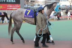 181231 東京2歳優駿牝馬-05