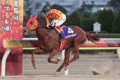181231 東京2歳優駿牝馬優勝時