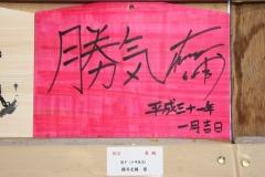190101 稲毛神社絵馬展示-13