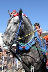 190102 ばん馬とのふれあい-05