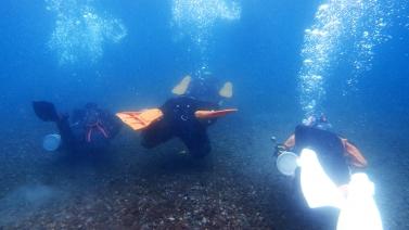diver1.jpg