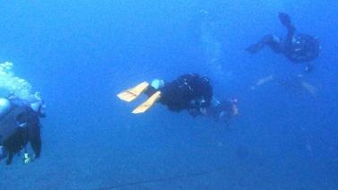 diver4.jpg