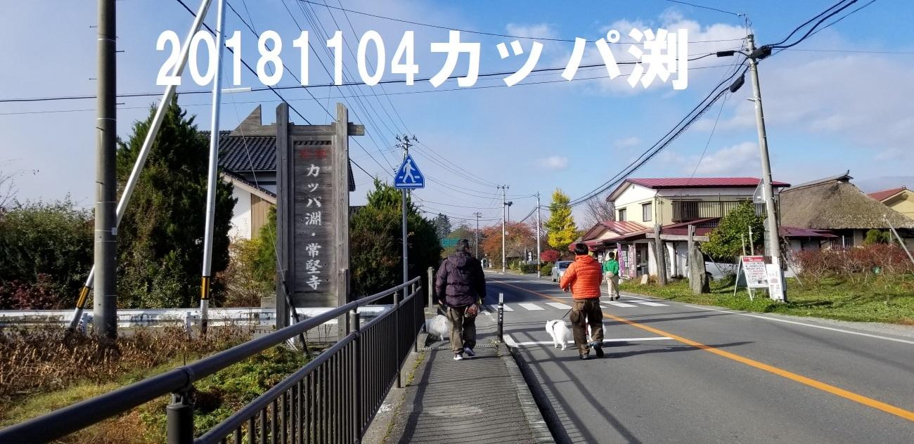 1_201811200801219ee.jpg