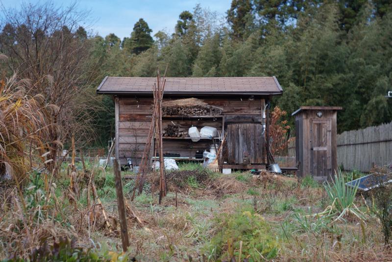 房総フィールドガーデン あずきの収穫2018 朝の小屋