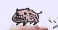 猪01213 (8)