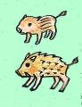 猪ことわざイノシシ