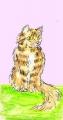 龍猫家のネコ (2)