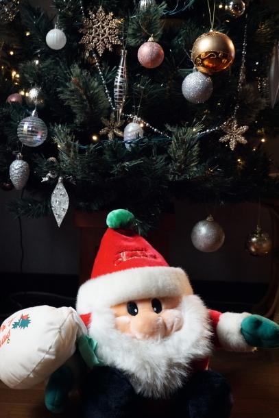 クリスマスツリー ソニー00064566