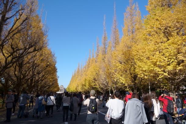 赤坂迎賓館00065511