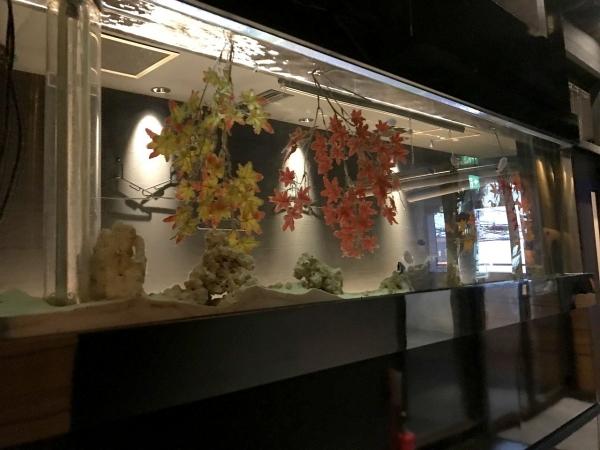 地鶏個室居酒屋 鼓 心斎橋店 (6)