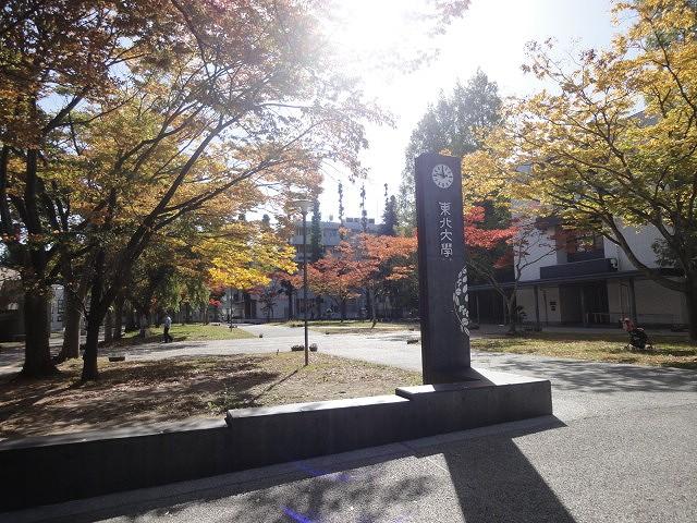 東北大学 川内キャンパス