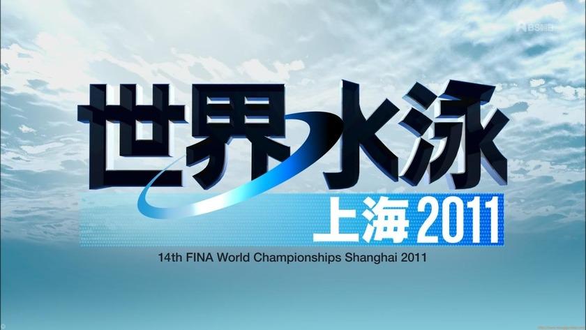 2011世界水泳 シンクロデュエットフリー決勝1