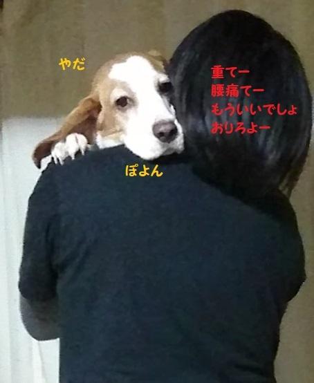 MOV_0776_000000.jpg