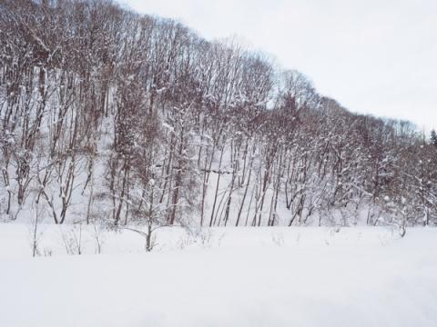 栗山ステイ20181230-02