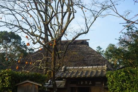 arashiyama_7.jpg