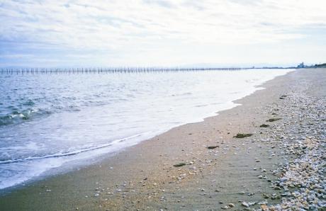 on_the_beach_5.jpg