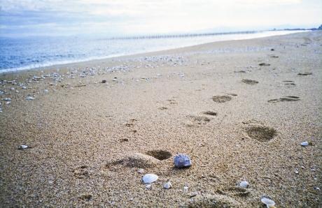 on_the_beach_6.jpg