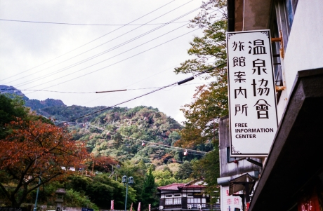 ynoyama_koyo_9.jpg