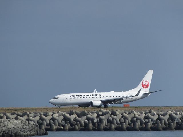 JAL737-800・奄美大嶋観光ガイド