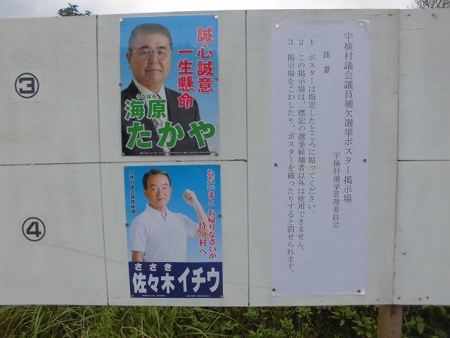 2019宇検村補欠選挙・奄美大嶋観光ガイド