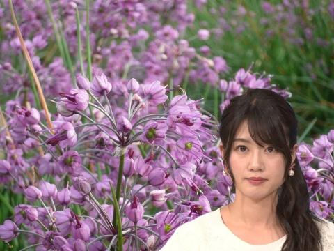 田中陽南 ラッキョウの花