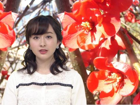 宇賀神 メグ ボケの花