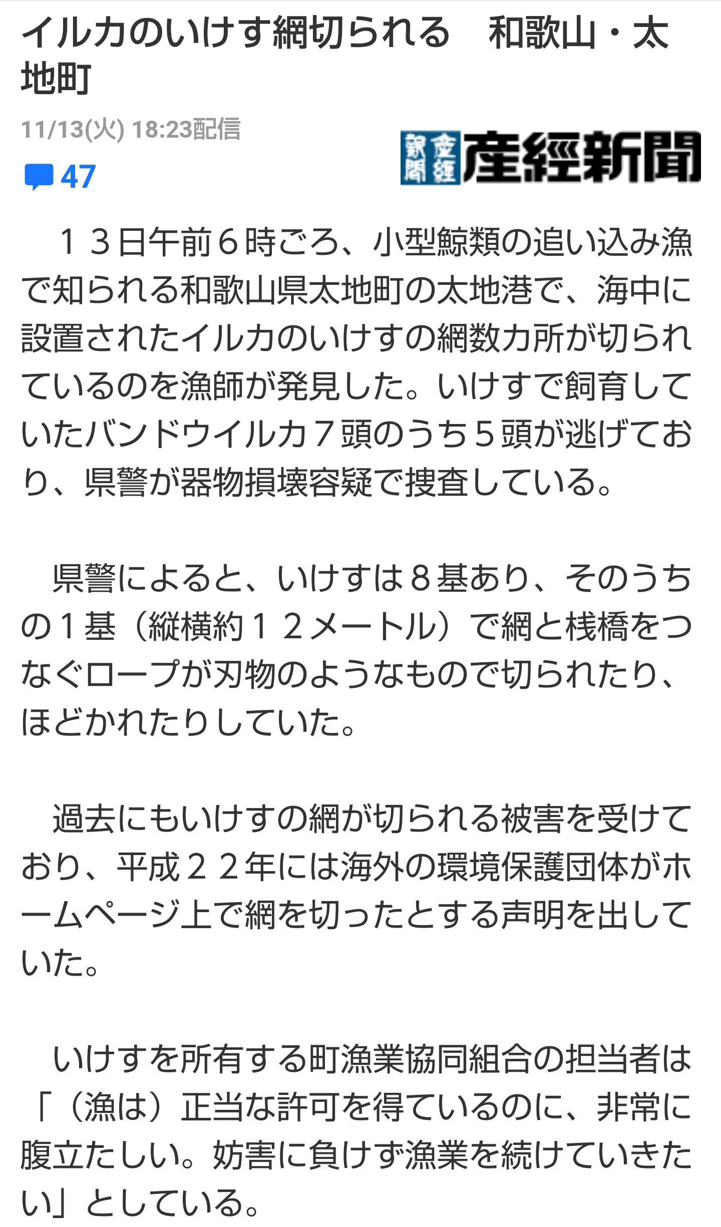irukanews3.jpg