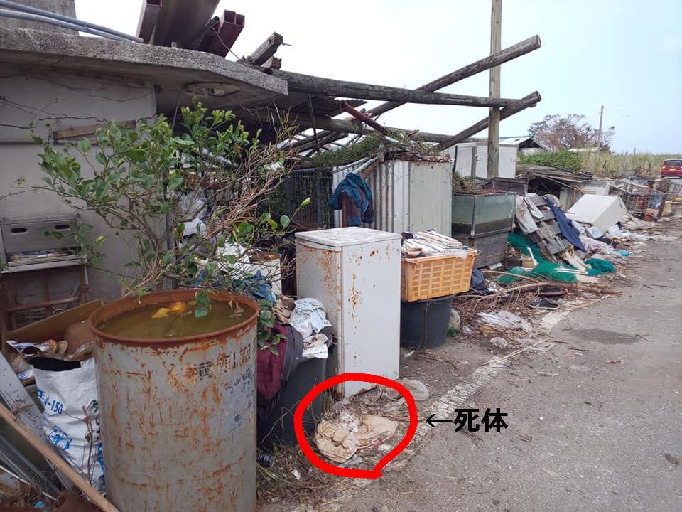 okinawagyakutaisisetu1.jpg