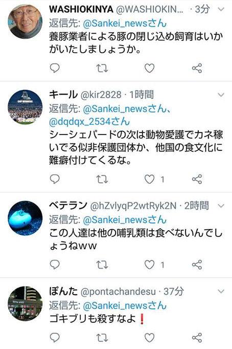 wakayamatw11a.jpg