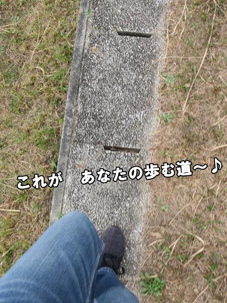 IMG_671220181119a.jpg