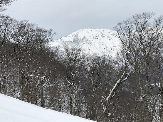 オニコウベ スキー場2019_1_3