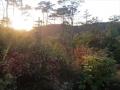 尾根道の夕陽