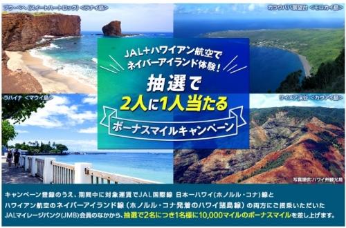 JAL+ハワイアン航空で抽選で2人に1人当たる ボーナスマイルキャンペーン