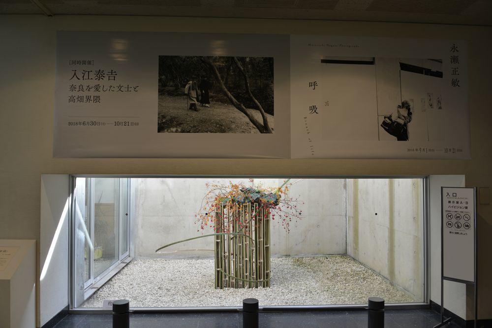 奈良写真館-2