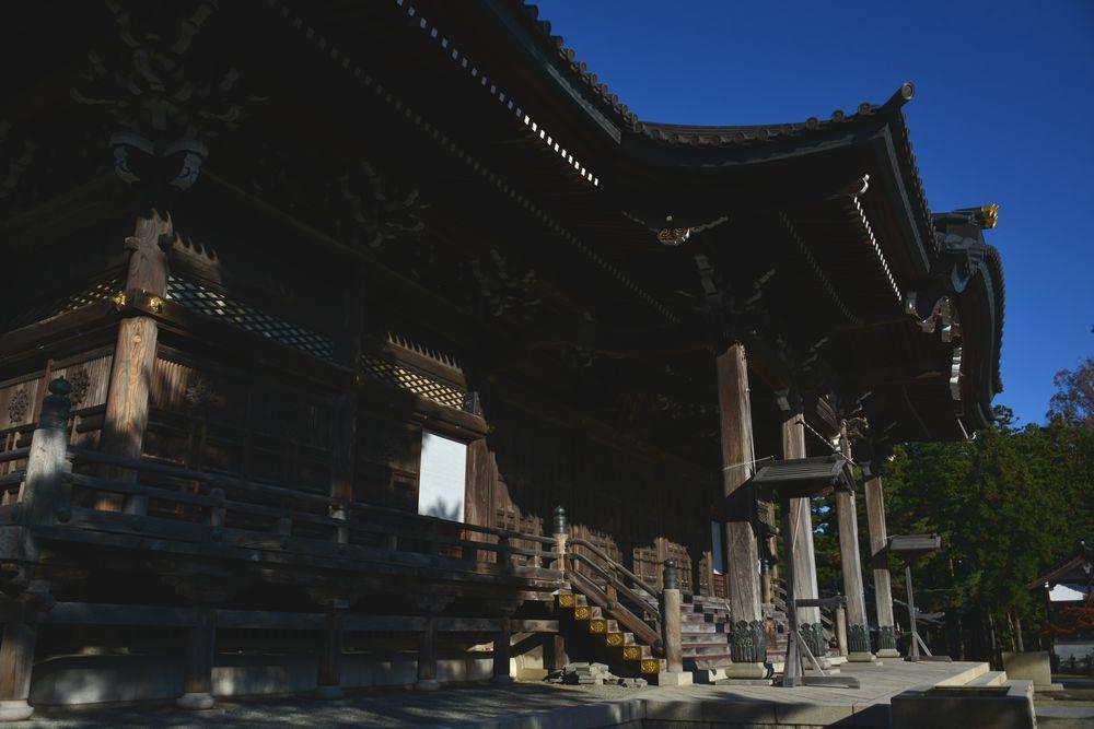 小春日和 本成寺-2