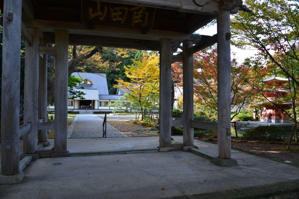 妙光寺の秋-1