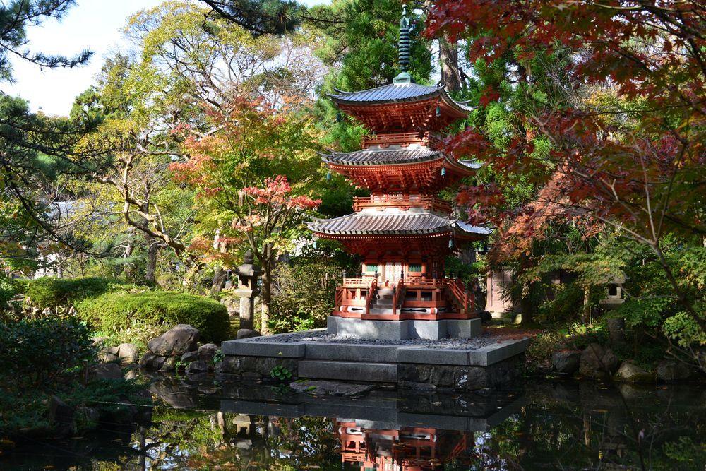 妙光寺の秋-2