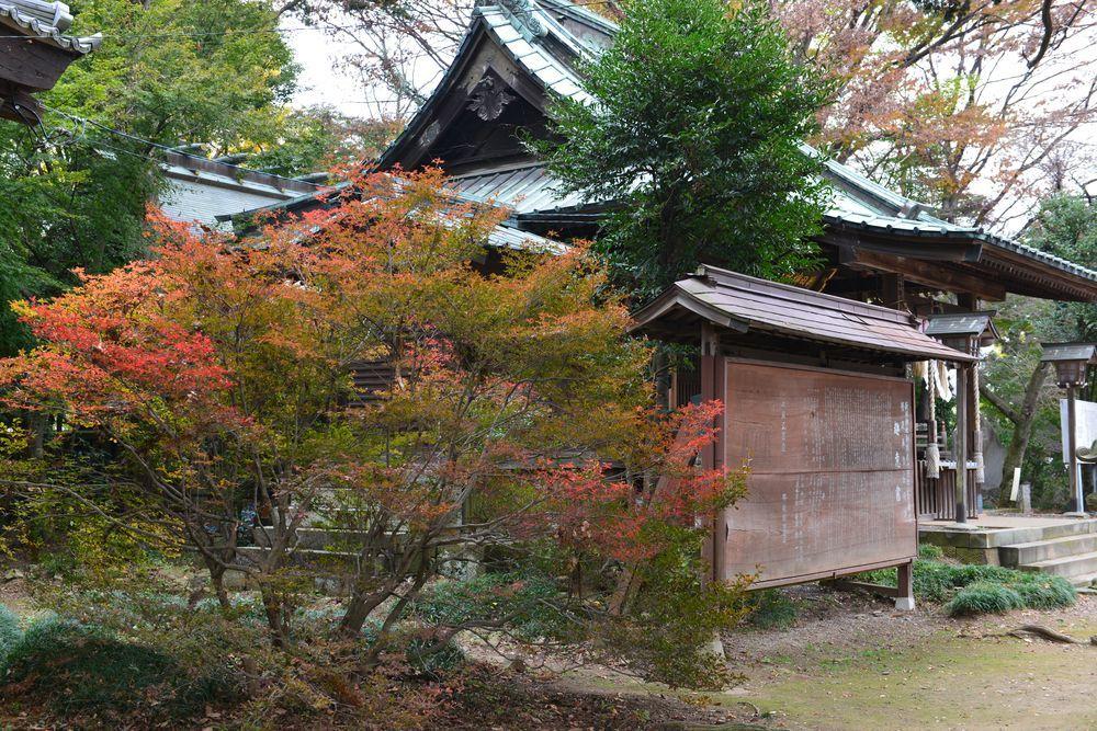 新田神社-4