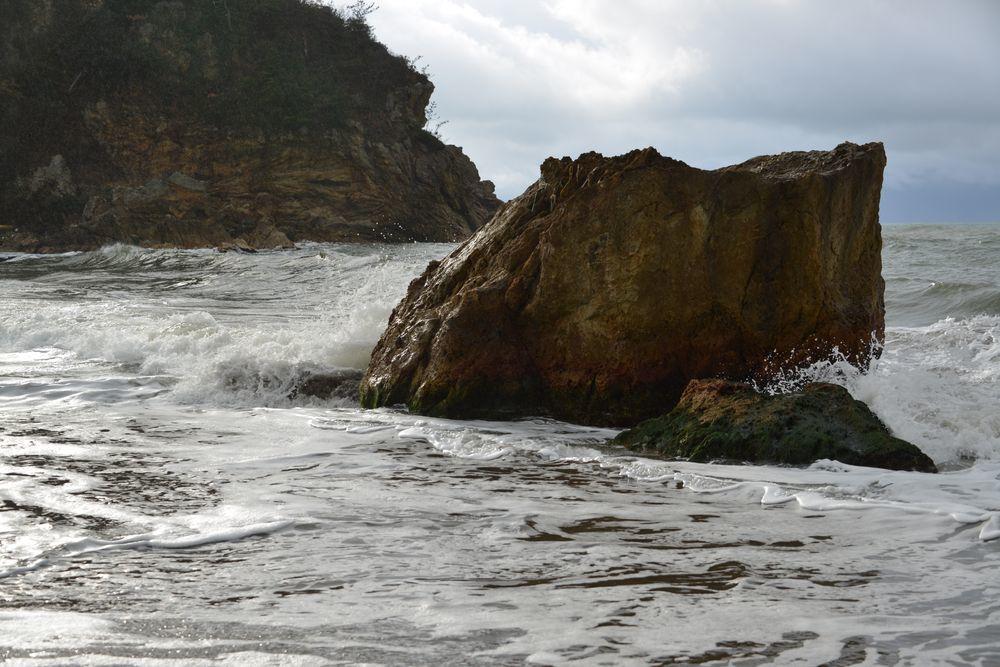 冬の海へ 岩-4