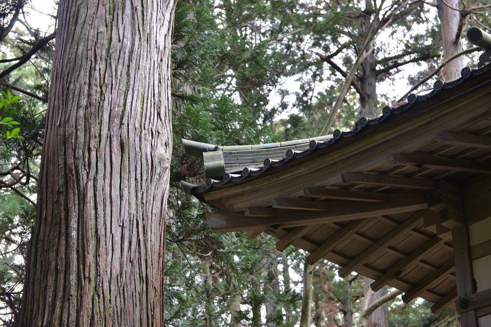師走の神社-3