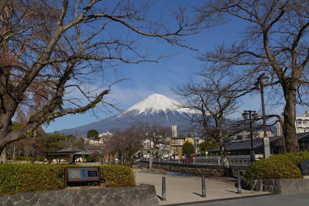 富士山本宮浅間大社-5