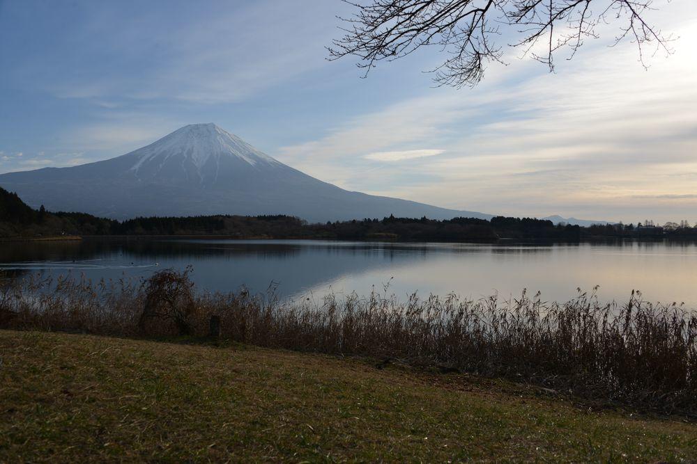 朝の田貫湖-1