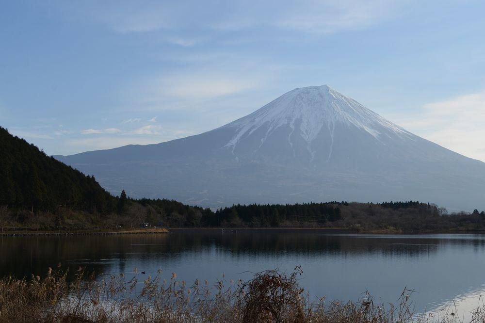 朝の田貫湖-9