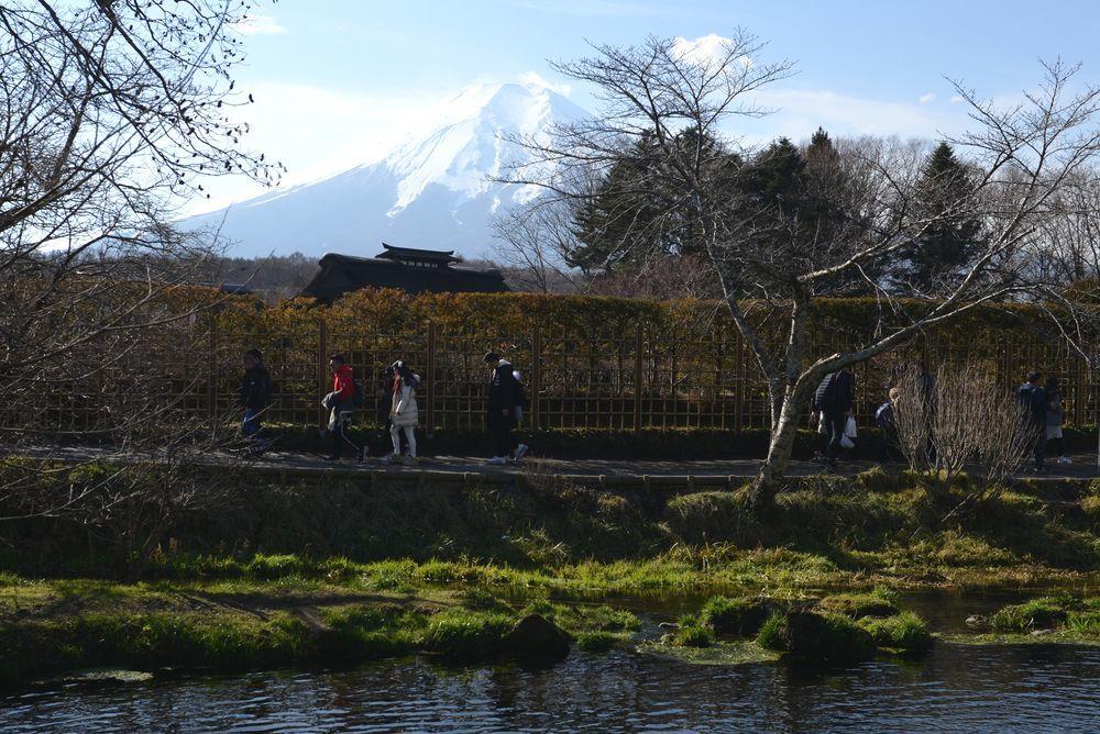 忍野から富士-4
