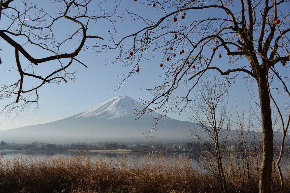 朝の河口湖畔から-3