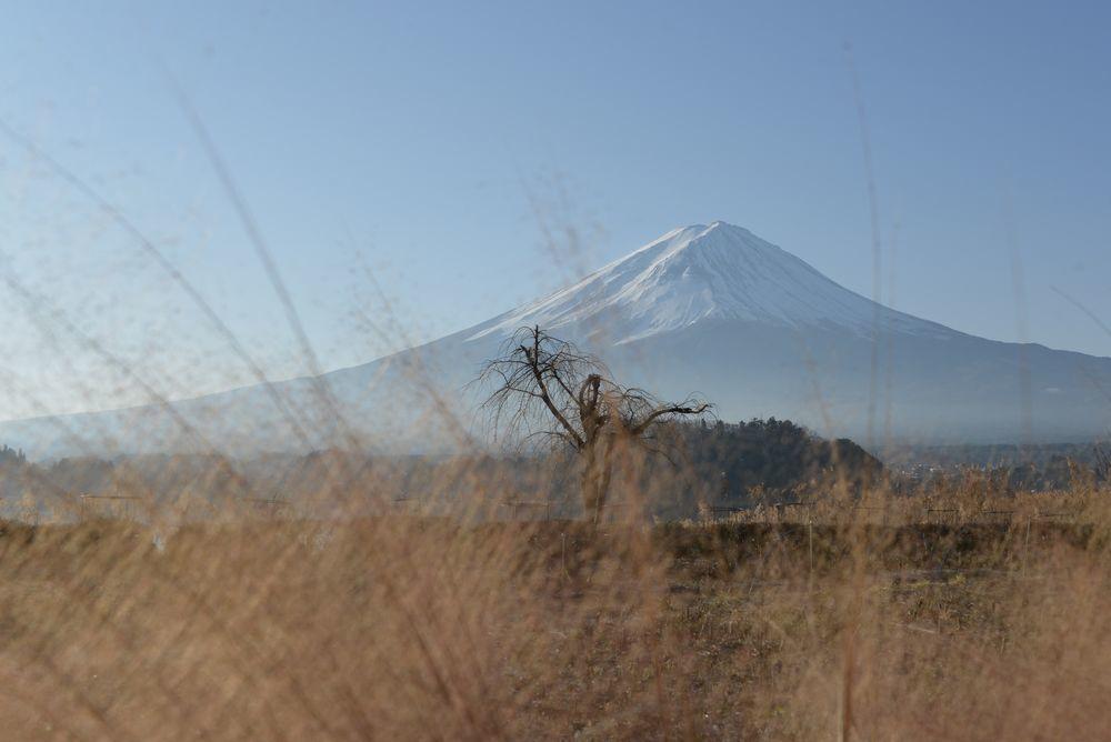 河口湖から富士-10