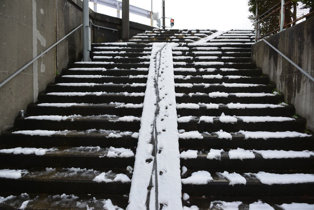 雪の土手道散歩-1