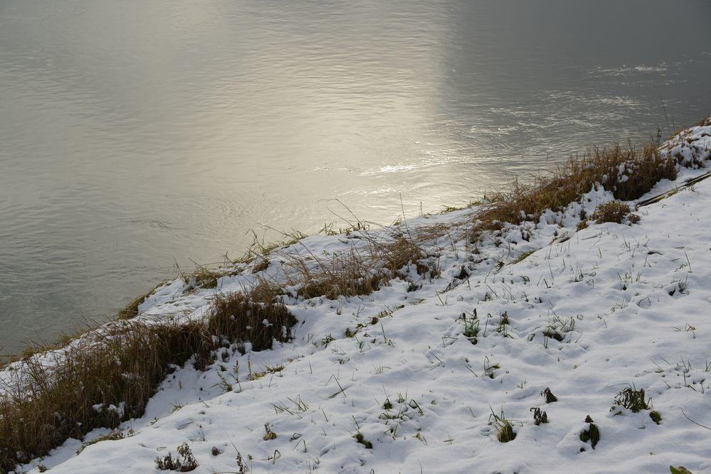 雪の土手道散歩-4